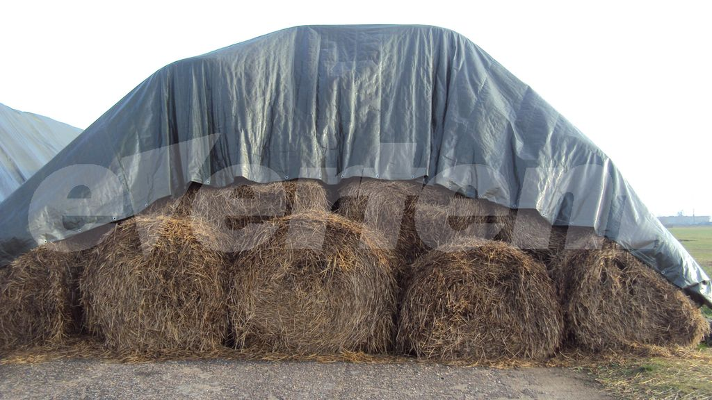 evertent-tent2